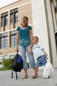 Child Custody MN